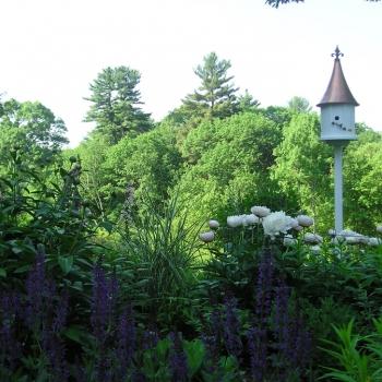 Concord-Garden-3bweb