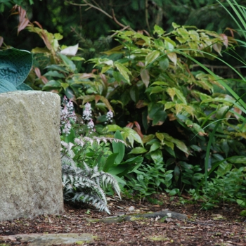 stonebench1