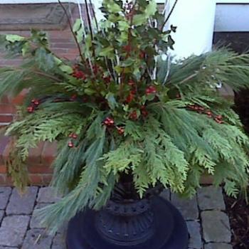 planters_4