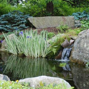 ponds2