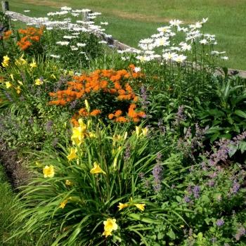 country_garden