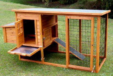 chicken coop installation