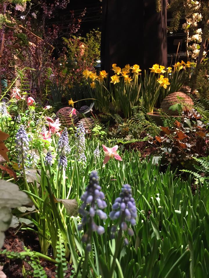 Boston flower show on the wharf the earth education company for Boston flower and garden show 2017